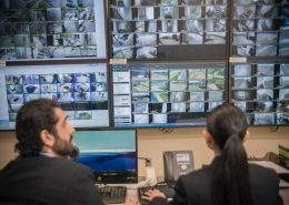 Security Systems Integration 1100x733