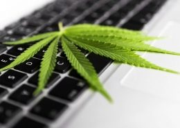 Marijuana use in the workplace 1100x696